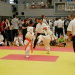 2019年9月8日(日)、大分南体育館にて「第7回士道館杯争奪ストロングオープントーナメント九州空手道選手権大会」が開催されました。